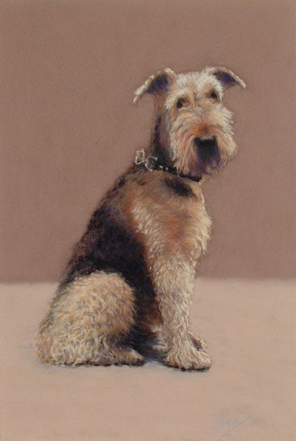Ben the Airedale pastel art